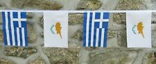More details for cyprus & greece flag bunting greek cypriot friendship bunting - 6m long 20 flags