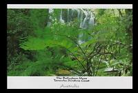 The BELLINGHAM MAZE at TANAWHA in SUNSHINE COAST QUEENSLAND POSTCARD -  QLD