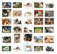 30 Personalized Return Address labels Animal Pictures Buy 3 get 1 free {c1}