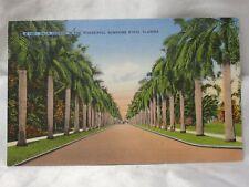 POST CARD 1949 Palm Avenue In The Wonderful Sunshine State Florida VINTAGE USA