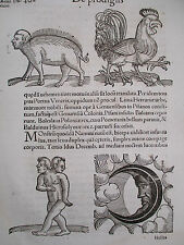 Wolfhart Chronicon Rare Woodcut Leaf Monster Moon Rooster - 1557