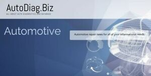 autodiag.biz 6 years old automotive project with the premium domain