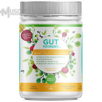 Every Body Every Day Gut Performance - 30 Serves - Active Prebiotic Fibre