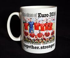 Wales Football Mug -  the class of euro 2016