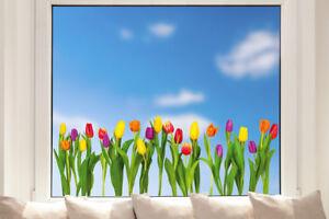 Hochwertige Fenstersticker Tulpen Blumen Frühling Fensteraufkleber Sommer