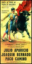 """Bullfighting - Plaza De Toros De Palma de Mallorca #3 Canvas Art Poster 12""""x 24"""""""