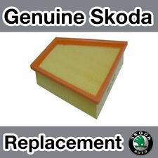 Genuine Skoda Fabia (6Y) 2.0, 1.9SDi, 1.4TDi, 1.9TDi (00-07) Air Filter