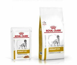 ROYAL CANIN VET URINARY S/O MODERATE CALORIE DOG DRY FOOD & POUCH - BEST PRICE!!
