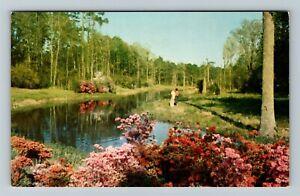 Biloxi MS-Mississippi, Lagoon At Beauvoir Jefferson Davis Shrine Chrome Postcard