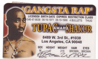Gangsta RAP /  RAPPER  novelty plastic collectors card Drivers License