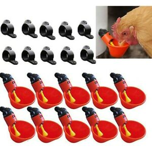 Red Feed Automatic Bird Coop Poultry Chicken Fowl Drinker Water Drinking Cup Set