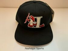 Vintage MiLB HICKORY CRAWDADS Minor League Baseball NEW ERA SnapBack HAT NWT