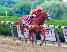 Justify Belmont Stakes and Triple Crown Winner 11x14 Photo