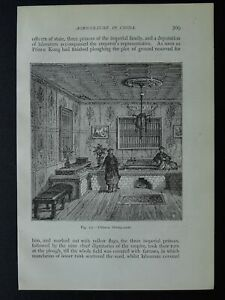 China A CHINESE SITTING ROOM Original Victorian Print by Figuier c1893