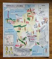 carte d'école - affiche scolaire 1960 céréales et légumes - la seine et affluent