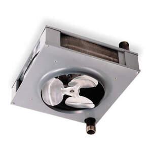 Dayton Hydronic Heater/Steam Heater 5PV68  120VAC
