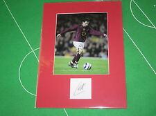 Arsenal Cesc Fabregas Signed 2005/06 Season Highbury Farewell Mount