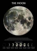 The Moon : Phases - Maxi Poster 61cm x 91.5cm new and sealed