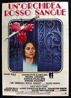 Werbeplakat Un'Orchidee Rot Blut Rampling Signoret Cremer Chereau M303