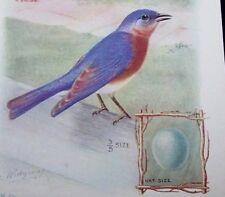 1929 SINGER SEWING MACHINE BIRD TRADE CARD-BLUEBIRD-PORTABLE MODELS