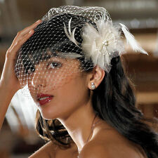 Bird Cage Style Veil Ivory Weddingstar Bride Bridal Accessory
