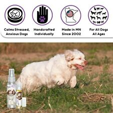 Clumber Spaniel Relax Dog Aromatherapy   Calm Anxious, Stressed Dogs Naturally