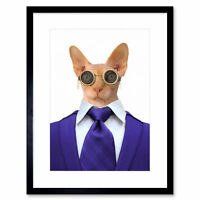 Steampunk Hairless Cat In Suit Wall Framed Wall Art Print 12X16 In