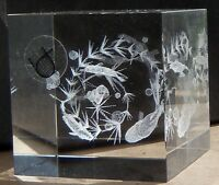 Crystal Impressions Sculpture Fine Laser Art  Aquaruim 3 D Paperweight Optical
