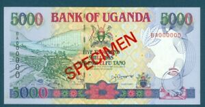 Uganda Specimen Pick 37as 5000 Shillings 1993