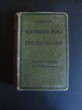 ANTIK 1903 Illustrierte Flora von Deutschland von Dr August Garcke K0317