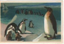 1968 ANTARCTICA Family penguins ART Aristov Old Soviet Russian postcard VTG