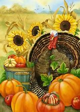 Hello Turkey Thanksgiving Fall Autumn Harvest Toland Pumpkin Garden Sm Flag