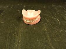 Vintage False Teeth Dentures Top & Bottom W/case Only Gag Gift Real