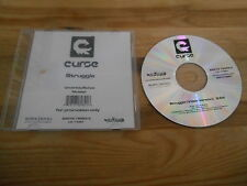 CD HipHop Curse-Struggle (1) canzone PROMO SONY BMG/subword SC