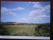 POSTCARD DURHAM VIEW FROM SHINCLIFFE - SUMMERS DAY