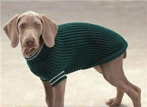 Casual Canine SHAKER KNIT Dog Coat Sweater LIMITED COLORS & SIZES  HURRY!