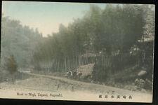 NAGASAKI, JAPAN 長崎 Hand Colored Post Card 1905-15, STREET, ROAD TO MOGI, TAGAMI