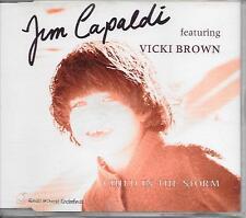 JIM CAPALDI ft VICKI BROWN - Child in the storm CD SINGLE 3TR BENELUX 1992