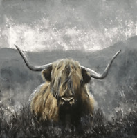 Highland Cow Grey Printed Canvas Wall Art 16 x 16 inch solid  pine frame