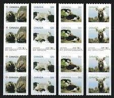 2014 Canada SC# 2711i-1i Baby Wildlife Coils Gutter Strips of 4 M-NH Lot# C634