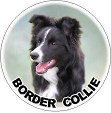 2 Border Collie Car Stickers Design No 2 By Starprint