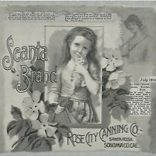 Victorian Ladies Soap Advertising Grey Silver - Wallpaper Border A258