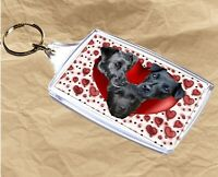 Patterdale Terrier Keyring Dog Gift Key Ring 77x45mm Xmas Gift Mothers Day Gift