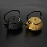 Cast Iron Teapot Kettle Japanese with Stainless Steel Infuser Strainer Gift