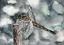 Dragonfly watercolor painting signed art print dragonflies pretty modern realism