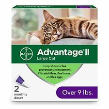 Ii 2-Dose Flea Prevention and Treatment for Large Cats, Over 9 Pounds 2-pack