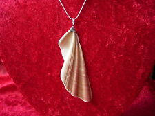 "angel wing gabriel sea shell pendant with silver mounting and 20 "" sts chain 1"