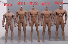 1/6 Male Body Figure TBLeague Phicen Seamless Muscular Steel M30 M31 M32 M33 M34