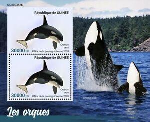 Guinea Marine Animals Stamps 2020 MNH Orcas Killer Whales Fauna 2v S/S + IMPF