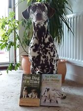 NO PLACE LIKE HOME BY PEN FARTHING NEW PAPERBACK - NOWZAD CHARITY